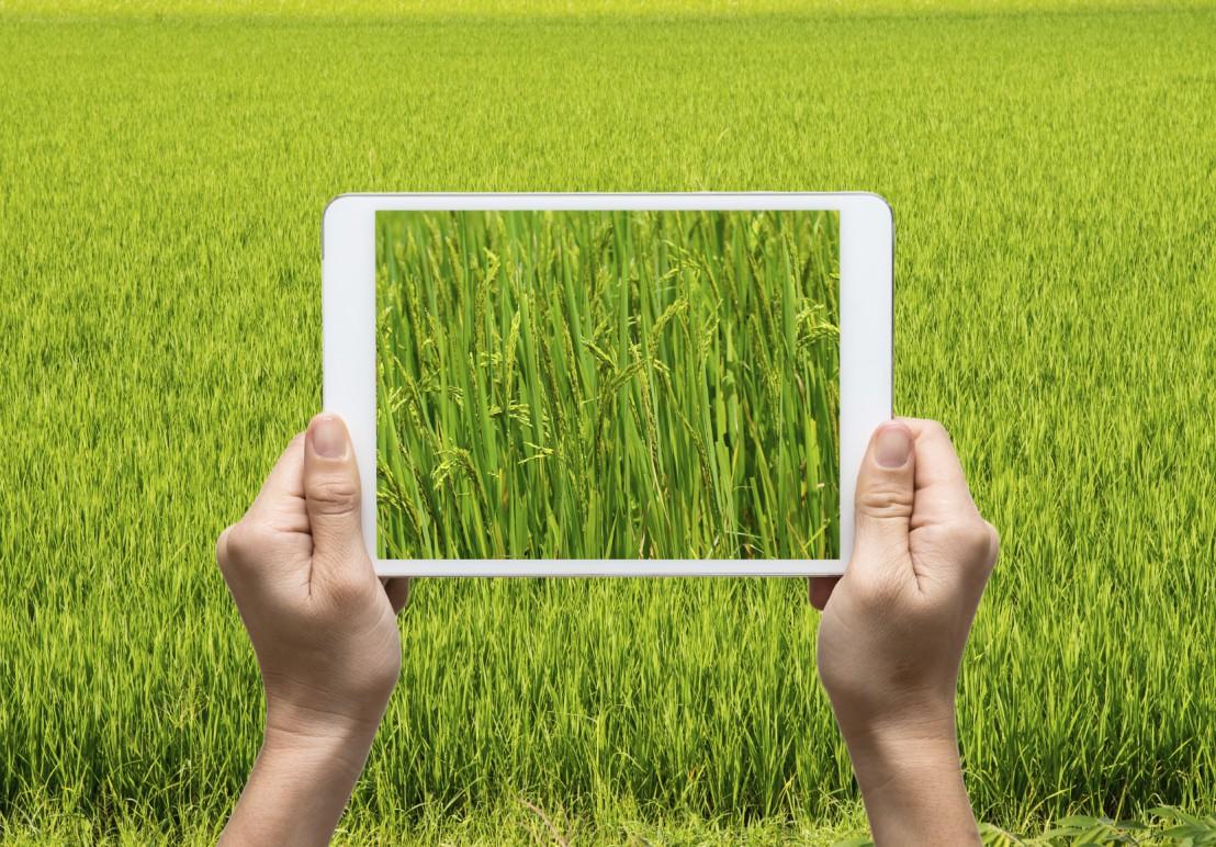 l'agriculture numérique